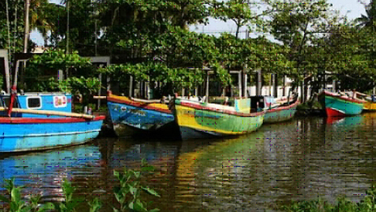 fishing village negombo